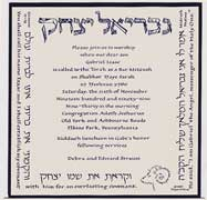 Bar Mitzvah Invitation - Gavriel